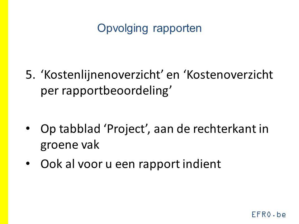 EFRO.be Opvolging rapporten 5.'Kostenlijnenoverzicht' en 'Kostenoverzicht per rapportbeoordeling' Op tabblad 'Project', aan de rechterkant in groene v