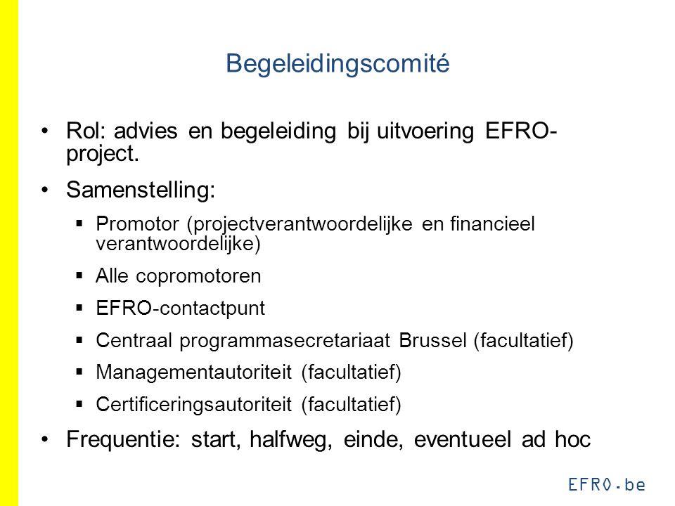 EFRO.be Begeleidingscomité Rol: advies en begeleiding bij uitvoering EFRO- project. Samenstelling:  Promotor (projectverantwoordelijke en financieel