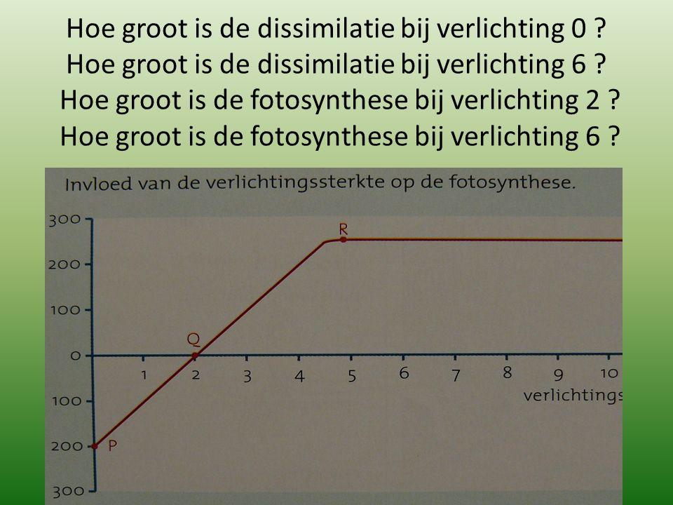 Hoe groot is de dissimilatie bij verlichting 0 ? Hoe groot is de dissimilatie bij verlichting 6 ? Hoe groot is de fotosynthese bij verlichting 2 ? Hoe