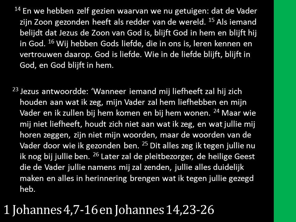 14 En we hebben zelf gezien waarvan we nu getuigen: dat de Vader zijn Zoon gezonden heeft als redder van de wereld.