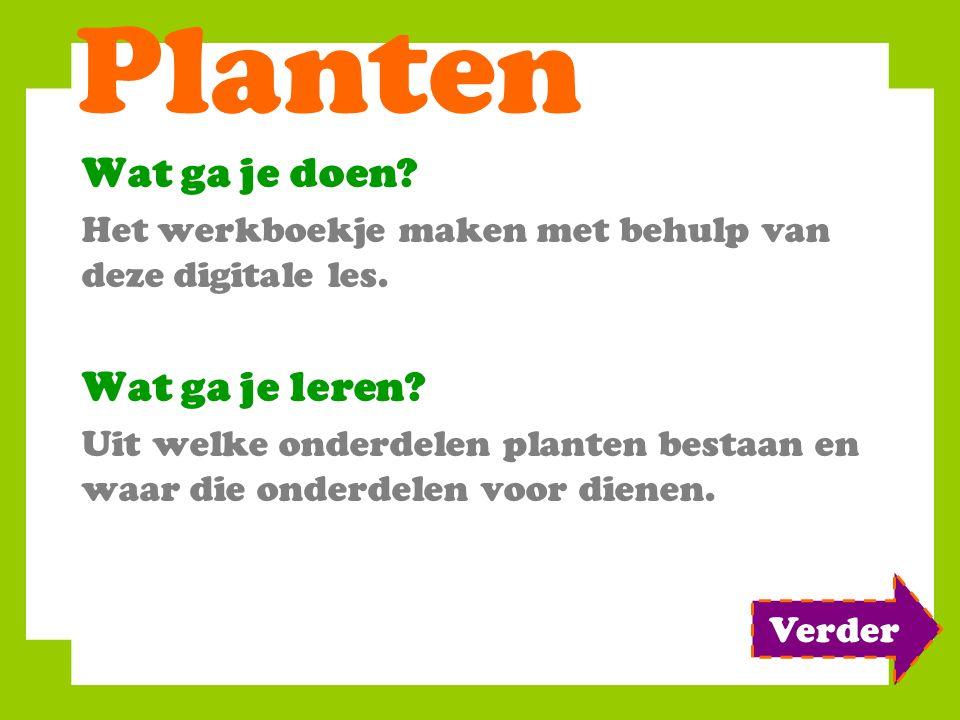 Planten Wat ga je doen.Het werkboekje maken met behulp van deze digitale les.