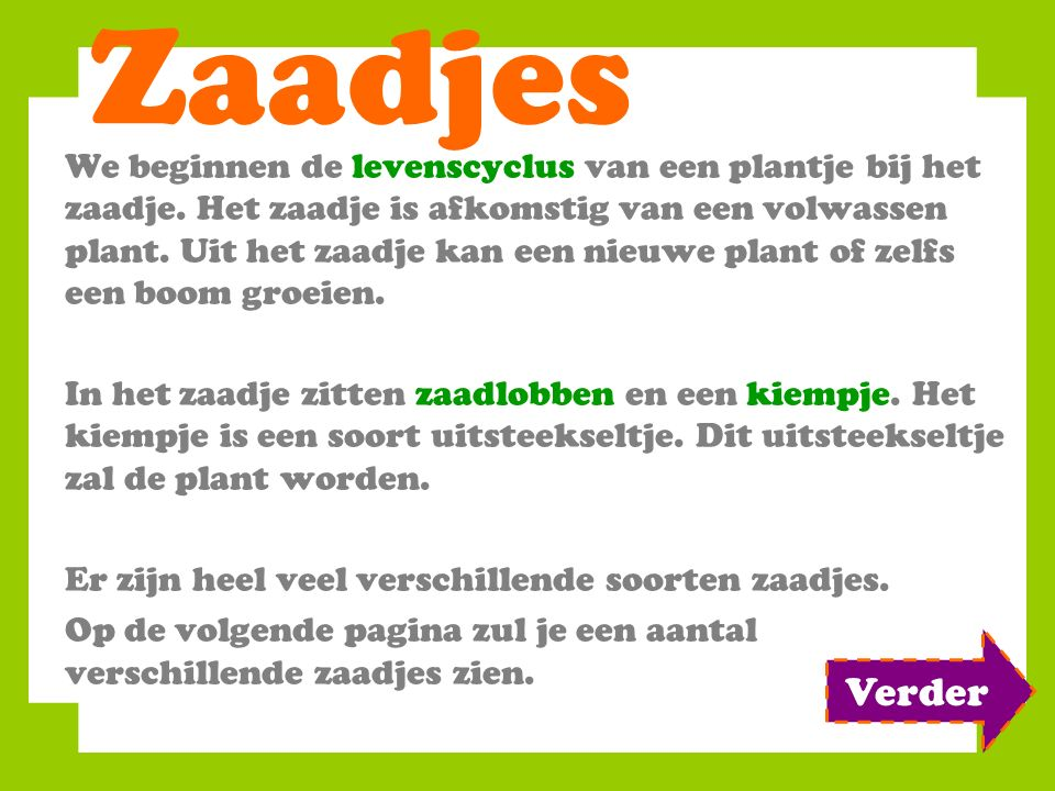 Zaadjes We beginnen de levenscyclus van een plantje bij het zaadje.