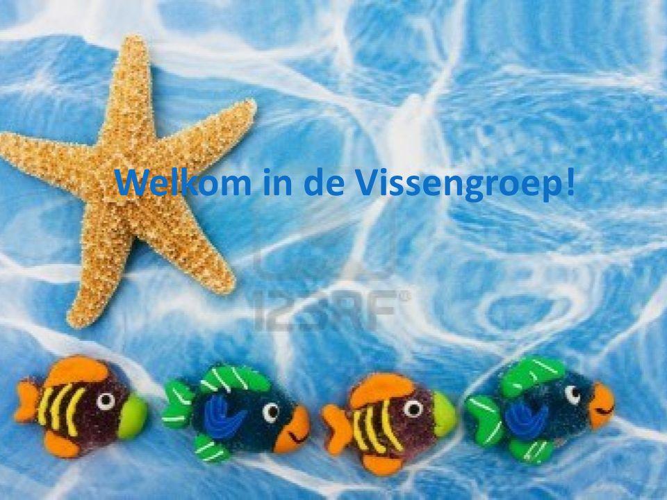 Welkom in de Vissengroep!