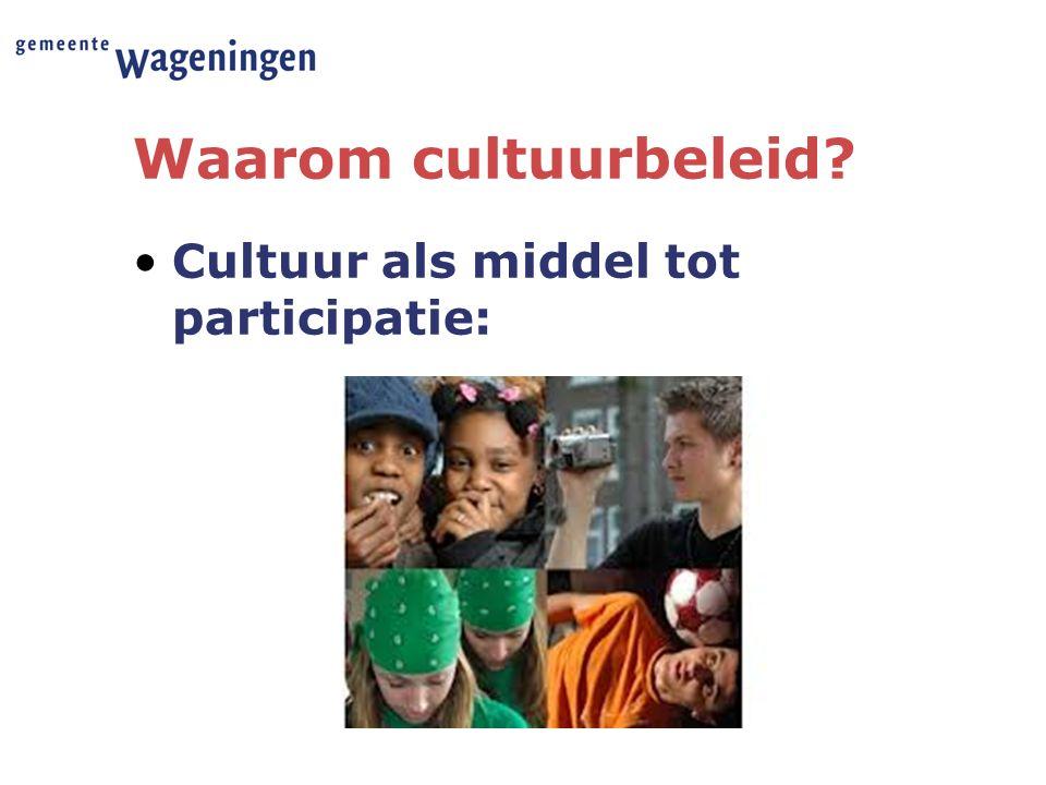 Waarom cultuurbeleid? Cultuur als middel tot participatie: