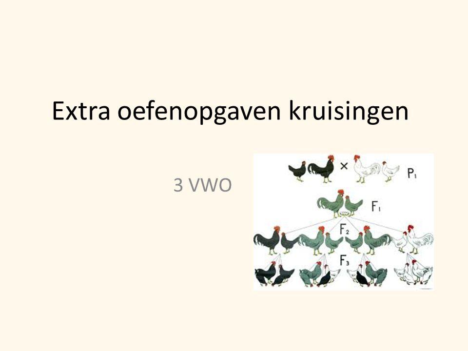 Extra oefenopgaven kruisingen 3 VWO