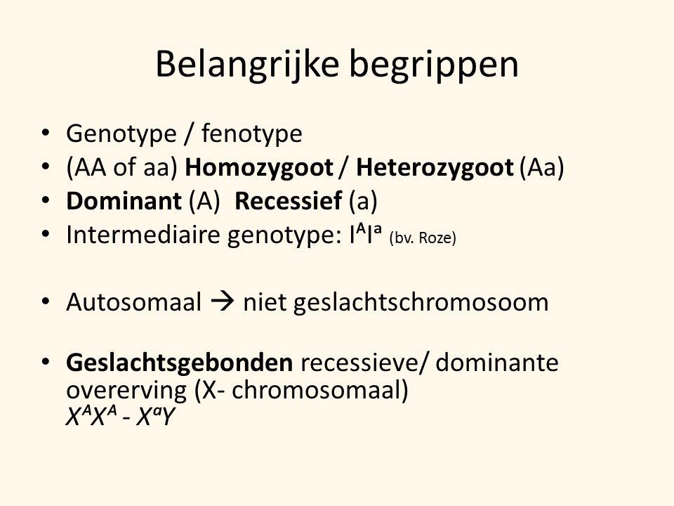 Belangrijke begrippen Genotype / fenotype (AA of aa) Homozygoot / Heterozygoot (Aa) Dominant (A) Recessief (a) Intermediaire genotype: IᴬIᵃ (bv.