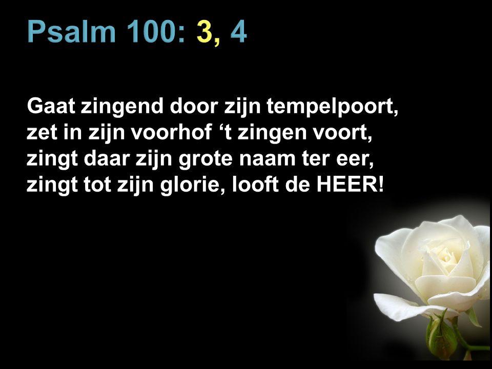 Psalm 100: 3, 4 Gaat zingend door zijn tempelpoort, zet in zijn voorhof 't zingen voort, zingt daar zijn grote naam ter eer, zingt tot zijn glorie, looft de HEER!