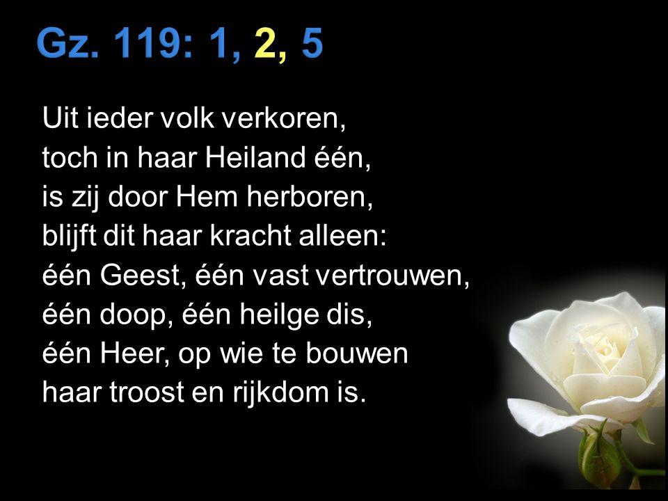 Uit ieder volk verkoren, toch in haar Heiland één, is zij door Hem herboren, blijft dit haar kracht alleen: één Geest, één vast vertrouwen, één doop, één heilge dis, één Heer, op wie te bouwen haar troost en rijkdom is.