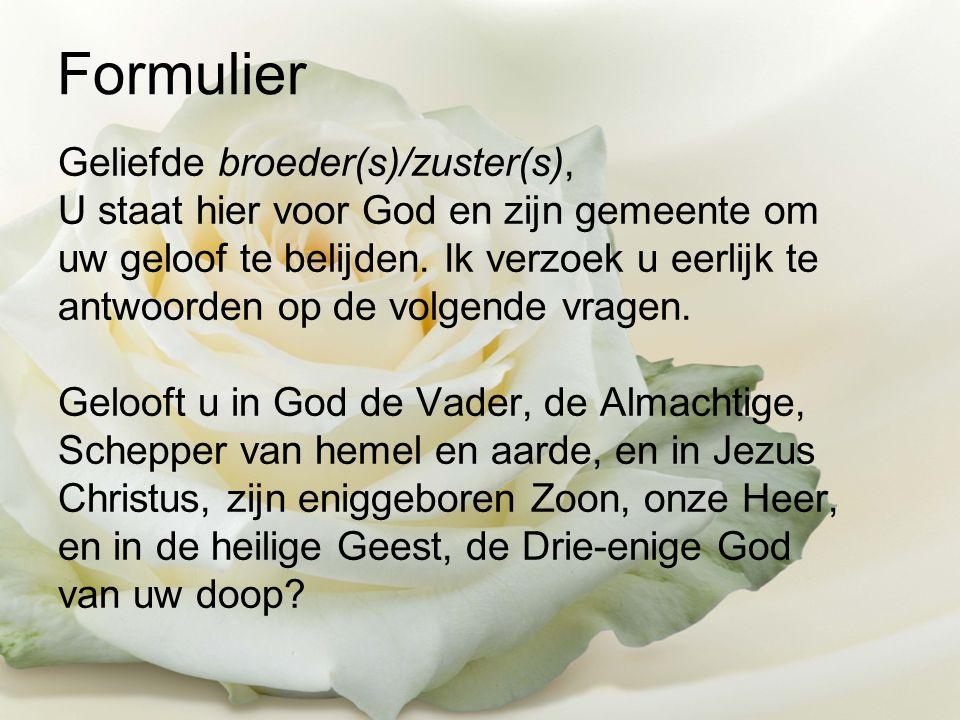 Formulier Geliefde broeder(s)/zuster(s), U staat hier voor God en zijn gemeente om uw geloof te belijden.
