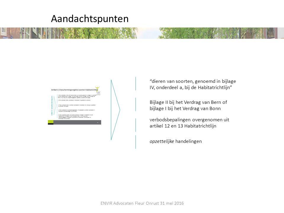 """Aandachtspunten """"dieren van soorten, genoemd in bijlage IV, onderdeel a, bij de Habitatrichtlijn"""" Bijlage II bij het Verdrag van Bern of bijlage I bij"""