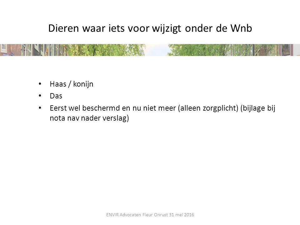 Dieren waar iets voor wijzigt onder de Wnb Haas / konijn Das Eerst wel beschermd en nu niet meer (alleen zorgplicht) (bijlage bij nota nav nader versl