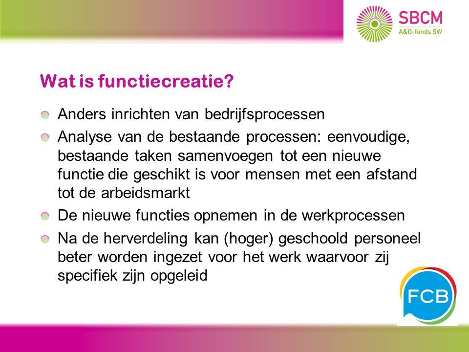 Wat is functiecreatie? Anders inrichten van bedrijfsprocessen Analyse van de bestaande processen: eenvoudige, bestaande taken samenvoegen tot een nieu