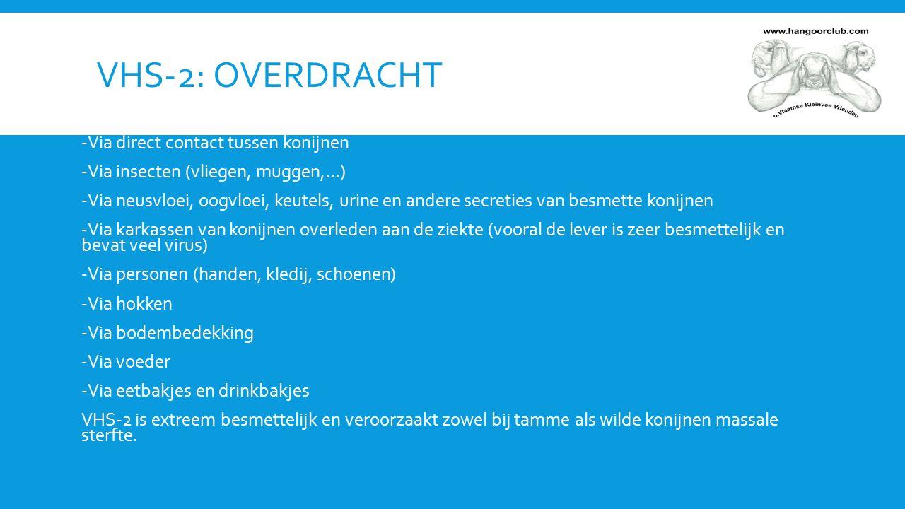 SYMPTOMEN -Acuut overlijden (vaak met een gil) onder voorafgaande symptomen -Bloedverlies (via de neus, mond) -Stuipen -Tremor (trillingen) -Ademhalingsproblemen met benauwdheid -Koorts (> 40°C).