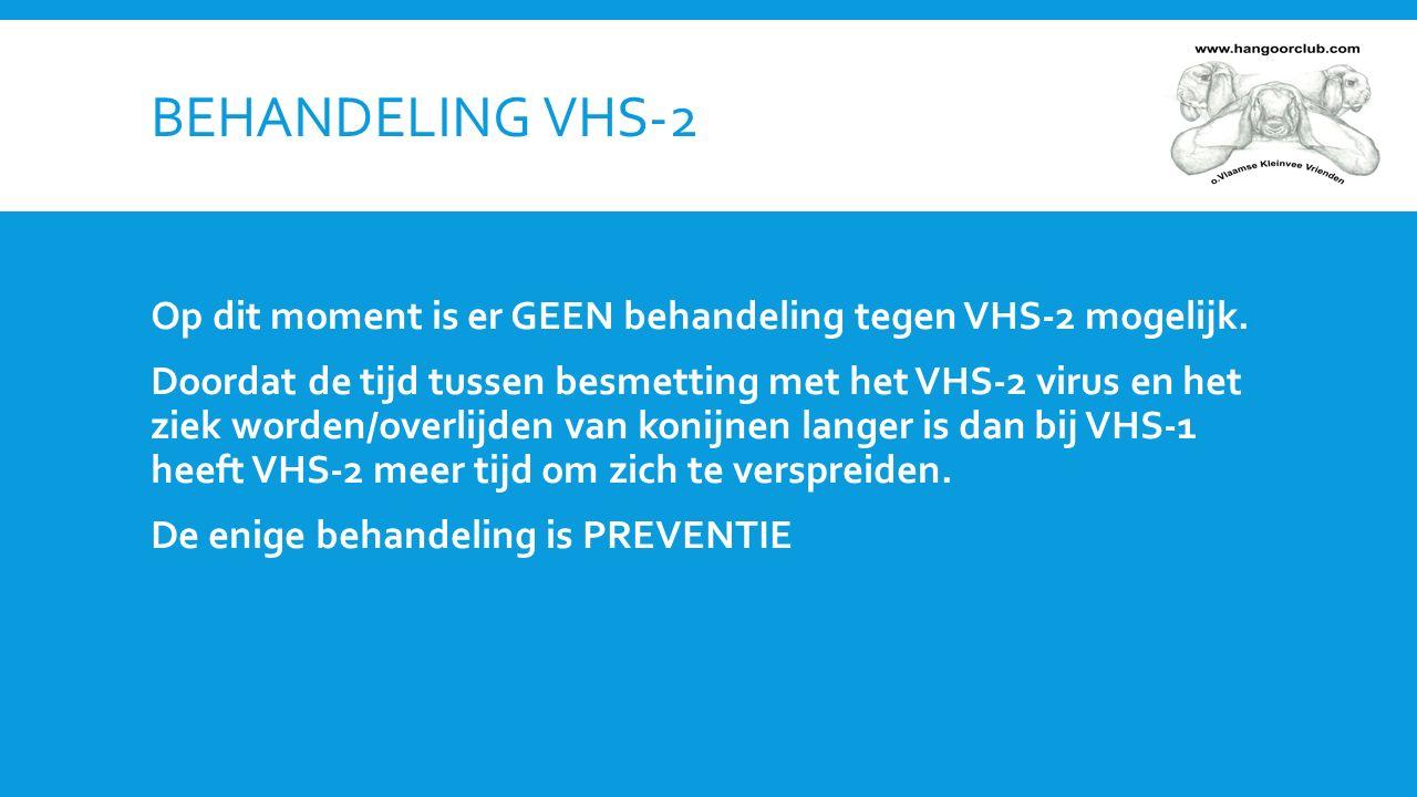 PREVENTIE VHS-2 is extreem besmettelijk -Hygiëne is zeer belangrijk -Quarantaine van zieke konijnen -Geen bijeenkomsten van konijnen: -GEEN groepsvaccinaties -GEEN shows OOK GEZONDE KONIJNEN KUNNEN DRAGER ZIJN VAN HET VIRUS EN ANDERE KONIJNEN BESMETTEN.