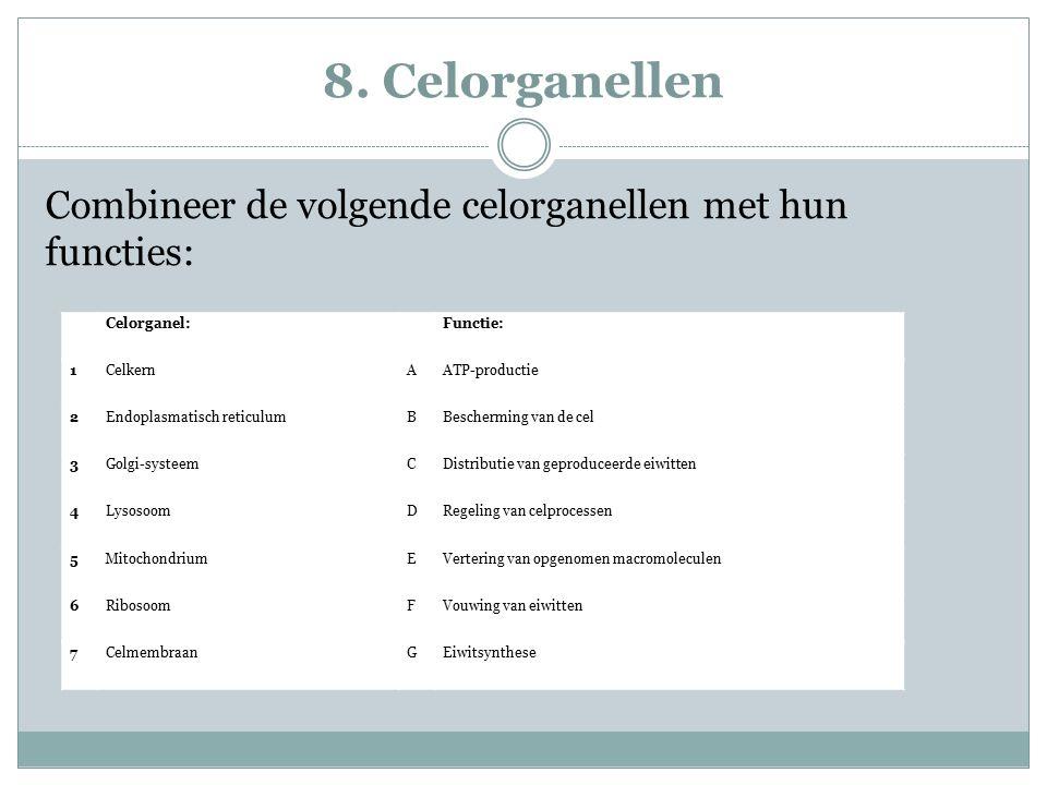 8. Celorganellen Combineer de volgende celorganellen met hun functies: Celorganel: Functie: 1CelkernAATP-productie 2Endoplasmatisch reticulumBBescherm
