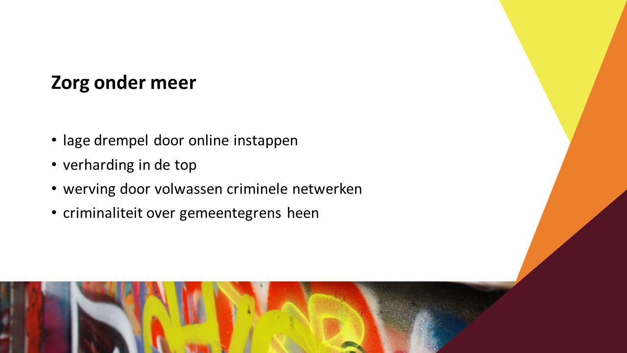 Zorg onder meer lage drempel door online instappen verharding in de top werving door volwassen criminele netwerken criminaliteit over gemeentegrens he