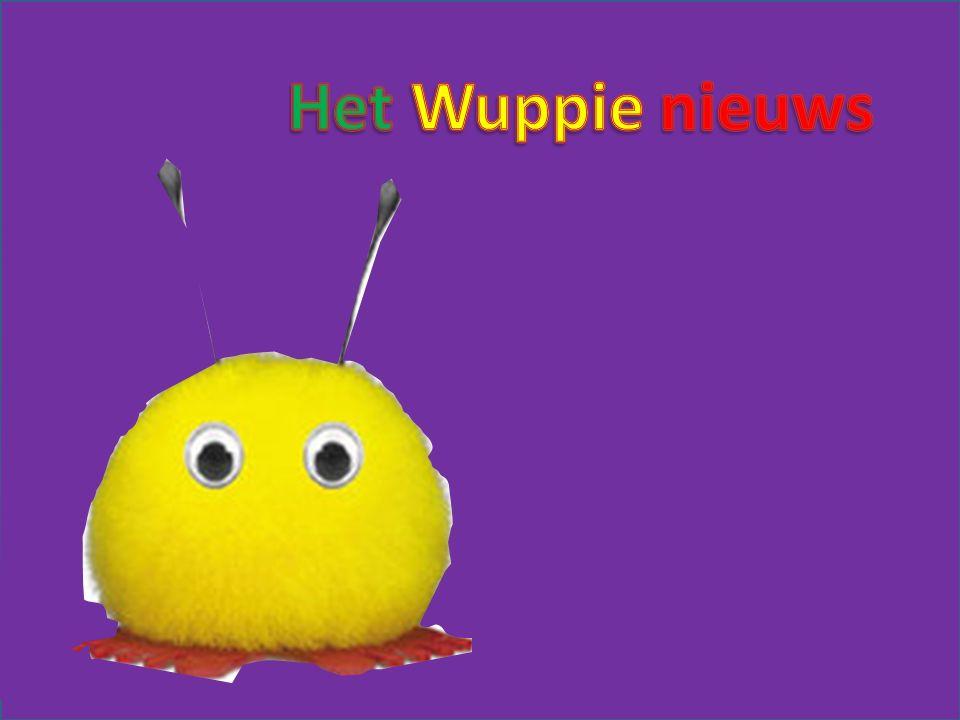 Wuppie journaal De pt
