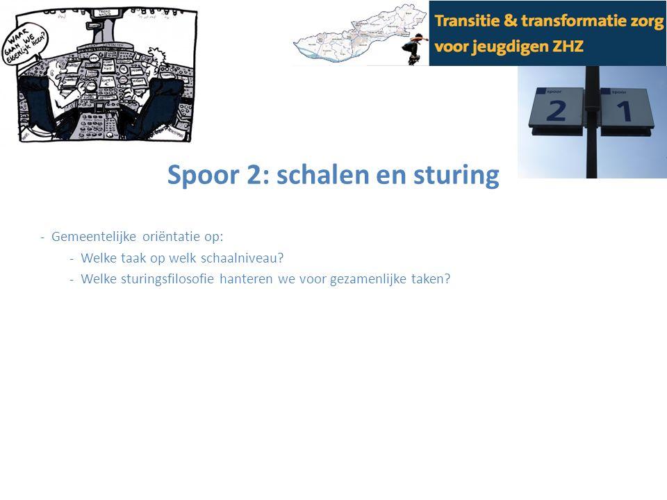 Spoor 2: schalen en sturing - Gemeentelijke oriëntatie op: - Welke taak op welk schaalniveau? - Welke sturingsfilosofie hanteren we voor gezamenlijke