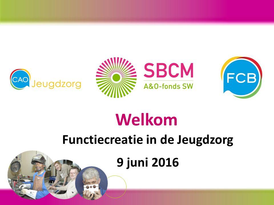 Welkom Functiecreatie in de Jeugdzorg 9 juni 2016