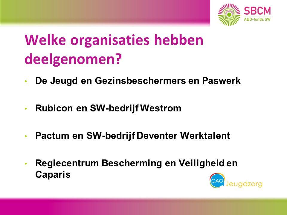 Welke organisaties hebben deelgenomen.