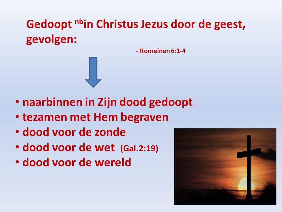 Gedoopt nb in Christus Jezus door de geest, gevolgen: - Romeinen 6:1-4 naarbinnen in Zijn dood gedoopt tezamen met Hem begraven dood voor de zonde dood voor de wet (Gal.2:19) dood voor de wereld