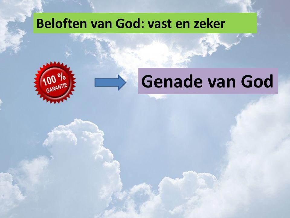 Beloften van God: vast en zeker Genade van God