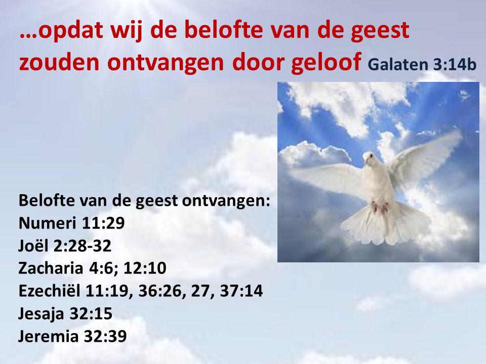 …opdat wij de belofte van de geest zouden ontvangen door geloof Galaten 3:14b Belofte van de geest ontvangen: Numeri 11:29 Joël 2:28-32 Zacharia 4:6; 12:10 Ezechiël 11:19, 36:26, 27, 37:14 Jesaja 32:15 Jeremia 32:39