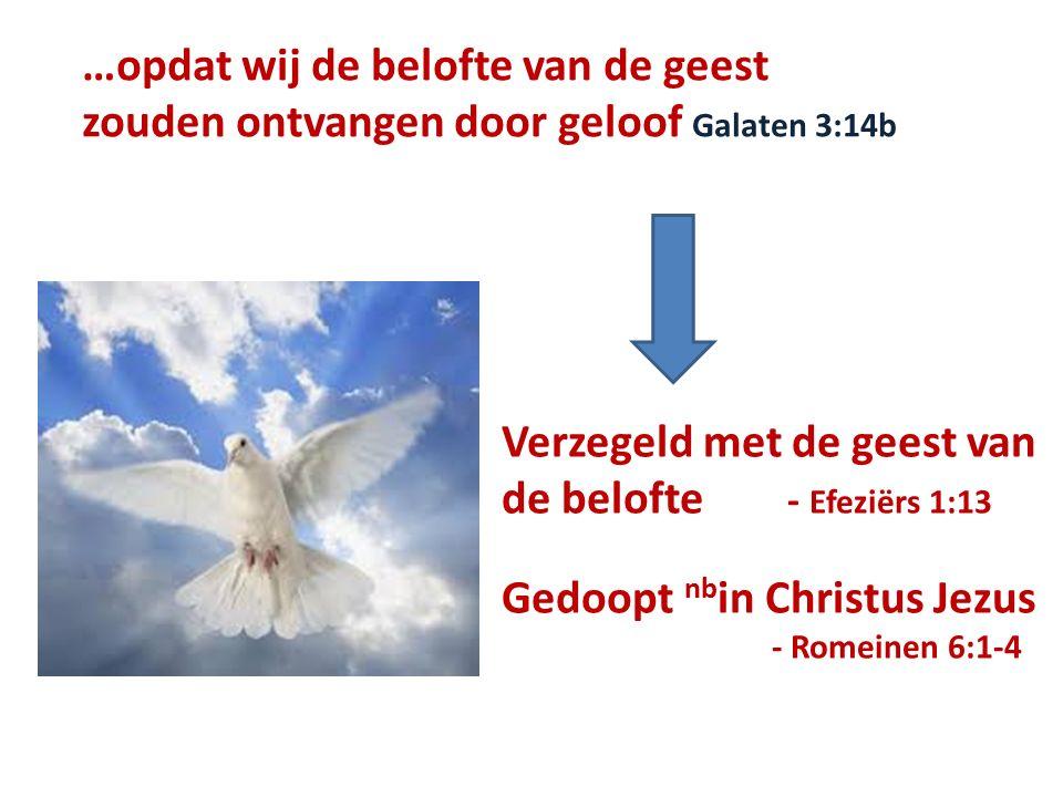 …opdat wij de belofte van de geest zouden ontvangen door geloof Galaten 3:14b Verzegeld met de geest van de belofte - Efeziërs 1:13 Gedoopt nb in Christus Jezus - Romeinen 6:1-4