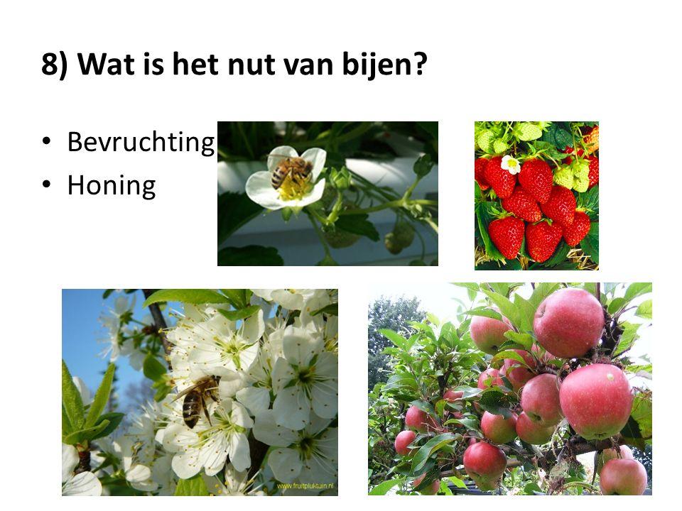 8) Wat is het nut van bijen? Bevruchting Honing