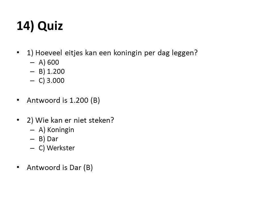 14) Quiz 1) Hoeveel eitjes kan een koningin per dag leggen? – A) 600 – B) 1.200 – C) 3.000 Antwoord is 1.200 (B) 2) Wie kan er niet steken? – A) Konin