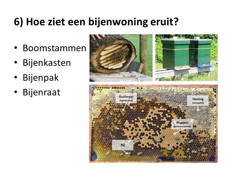 6) Hoe ziet een bijenwoning eruit? Boomstammen Bijenkasten Bijenpak Bijenraat