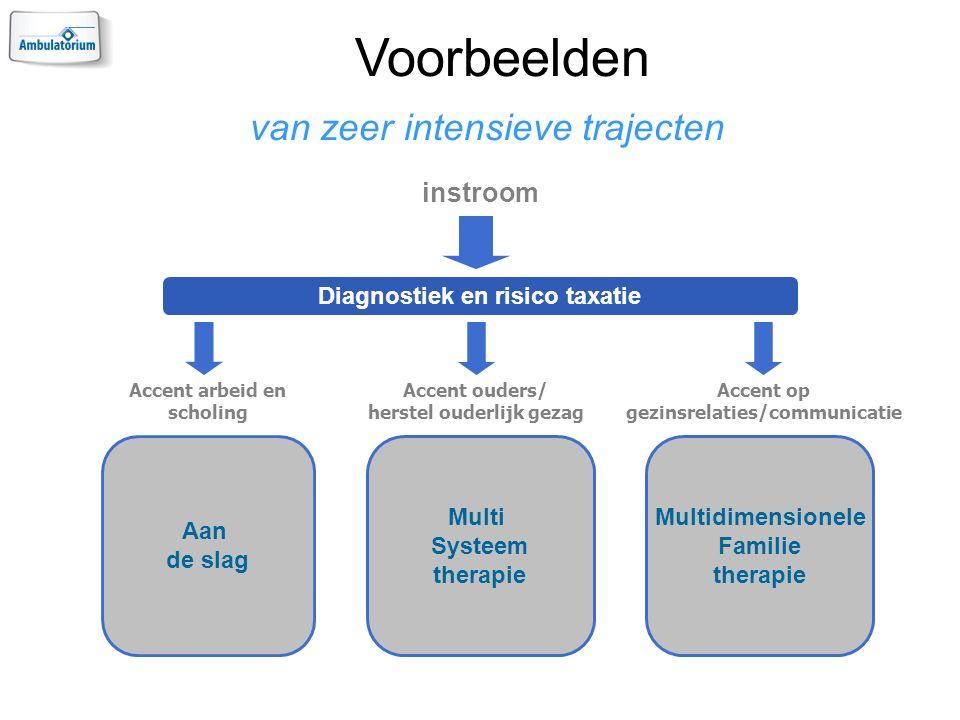 Voorbeelden van zeer intensieve trajecten Diagnostiek en risico taxatie Aan de slag Multi Systeem therapie Multidimensionele Familie therapie Accent arbeid en scholing Accent ouders/ herstel ouderlijk gezag Accent op gezinsrelaties/communicatie instroom