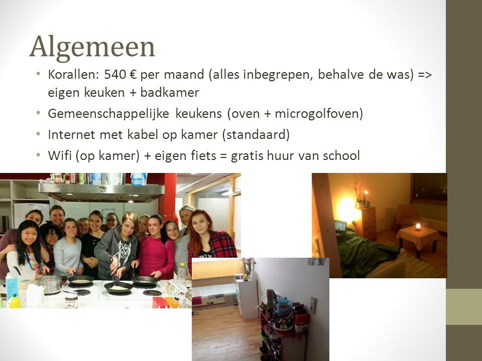 Algemeen Korallen: 540 € per maand (alles inbegrepen, behalve de was) => eigen keuken + badkamer Gemeenschappelijke keukens (oven + microgolfoven) Int