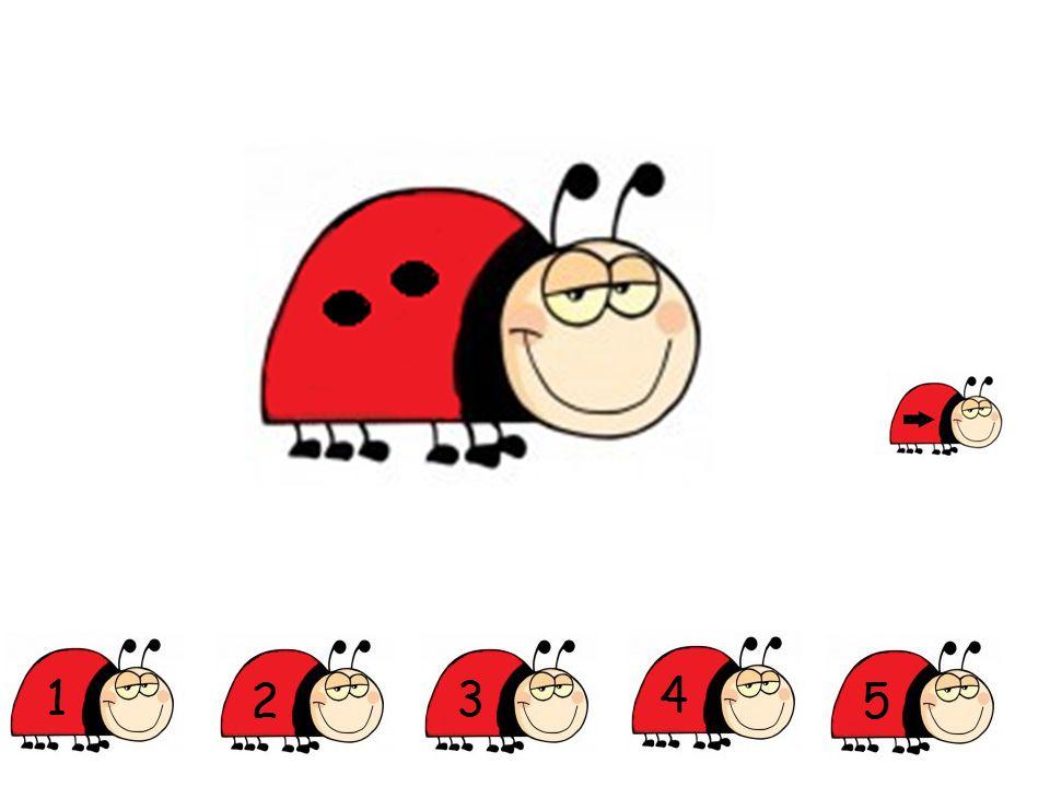 Klik op het rode lieveheersbeestje.