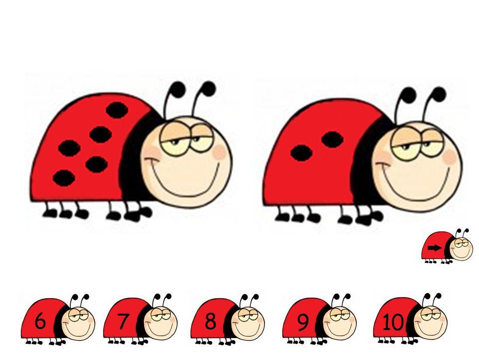 Op welke foto zie je minder dan 3 lieveheersbeestjes?