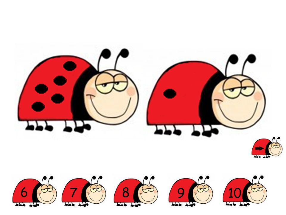 Op welke foto zie je minder dan 4 lieveheersbeestjes?