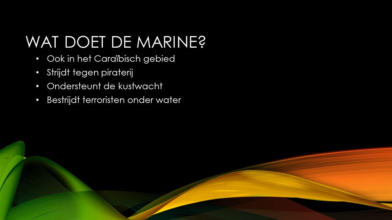 WAT DOET DE MARINE? Ook in het Caraïbisch gebied Strijdt tegen piraterij Ondersteunt de kustwacht Bestrijdt terroristen onder water