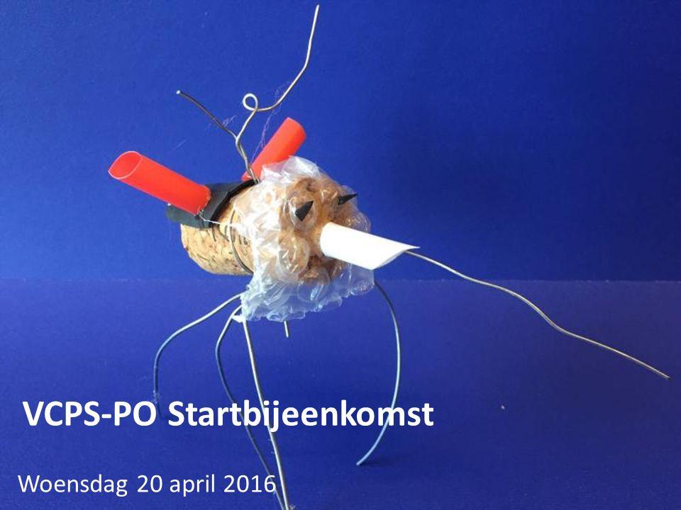 Programma 16.00Welkom 16.10(titel?) Mark Mieras 16.45Officiële oprichting VCPS-PO 17.15Muzikaal intermezzo, Jantje van der Wurf 18.00 Buffet 18.45VCPS-PO, hoe (n)u verder.