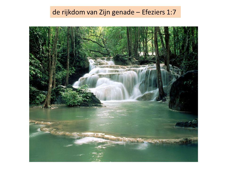 de rijkdom van Zijn genade – Efeziers 1:7
