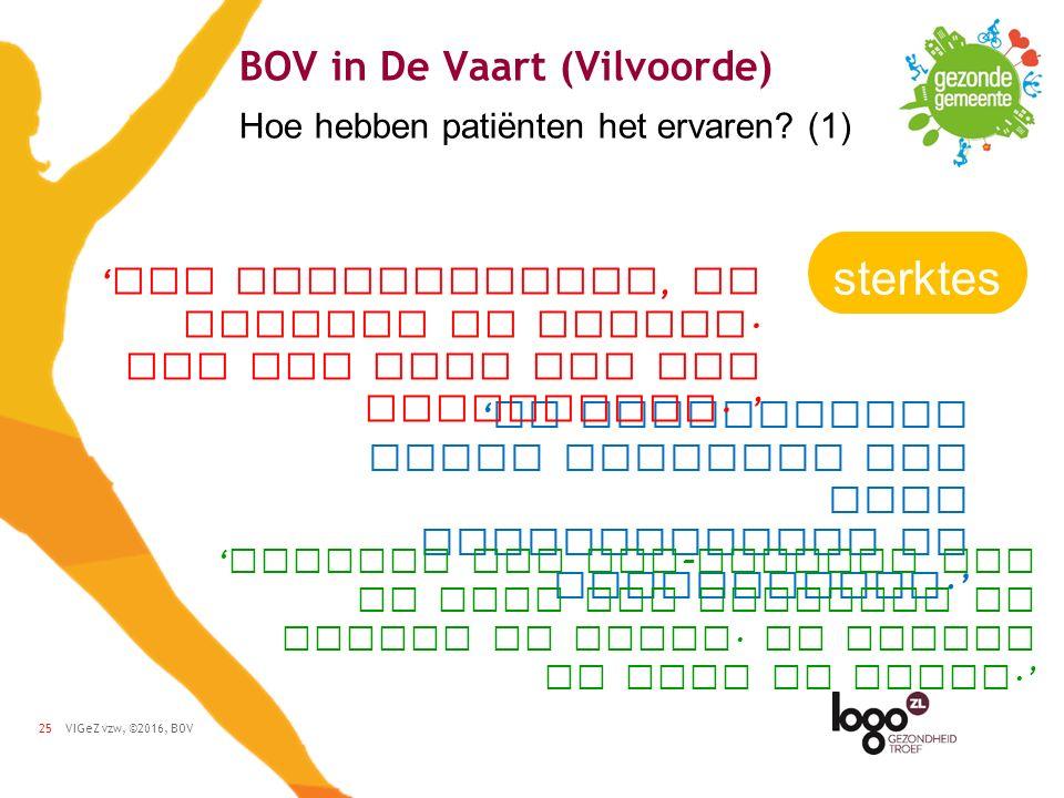 VIGeZ vzw, ©2016, BOV25 BOV in De Vaart (Vilvoorde) Hoe hebben patiënten het ervaren.