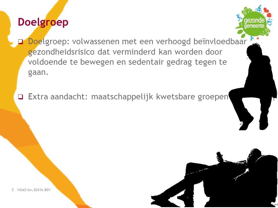 VIGeZ vzw, ©2016, BOV3 Doelgroep  Doelgroep: volwassenen met een verhoogd beïnvloedbaar gezondheidsrisico dat verminderd kan worden door voldoende te bewegen en sedentair gedrag tegen te gaan.