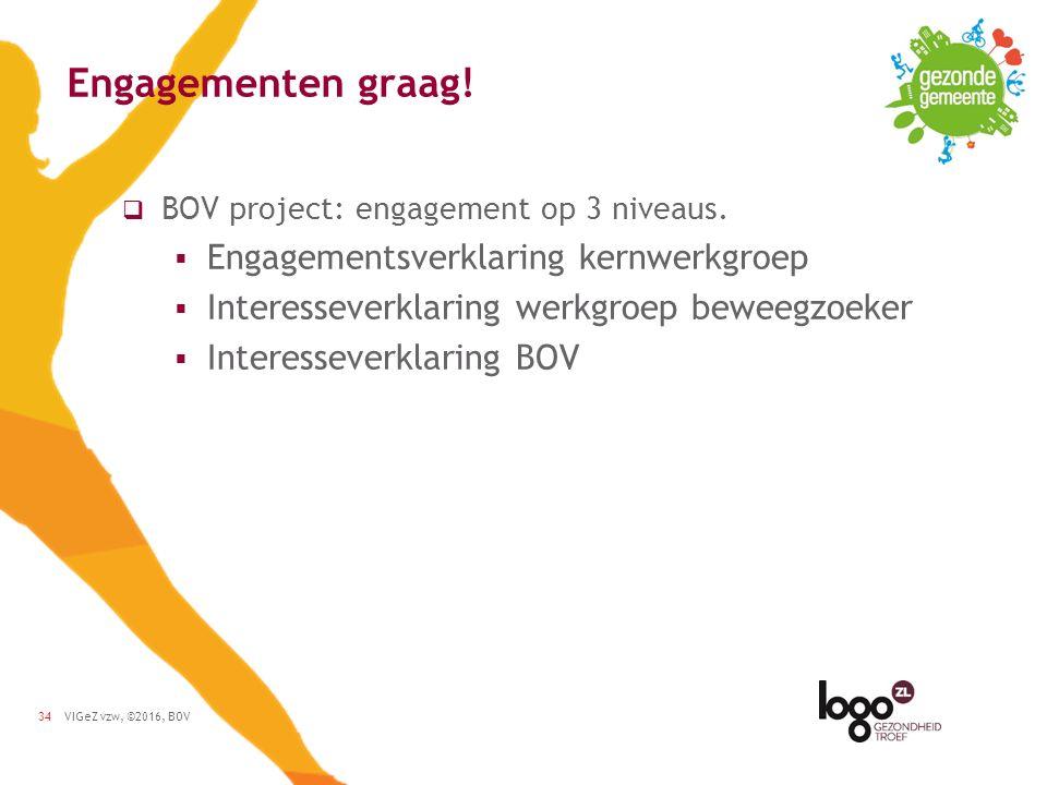 VIGeZ vzw, ©2016, BOV34 Engagementen graag.  BOV project: engagement op 3 niveaus.