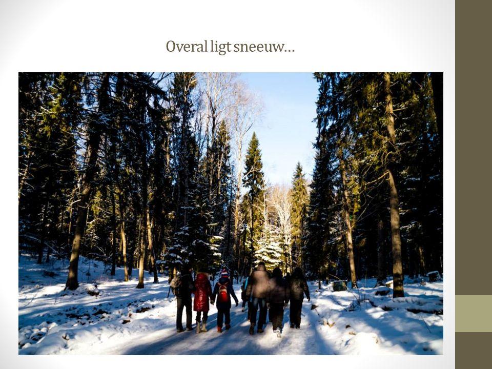Overal ligt sneeuw…