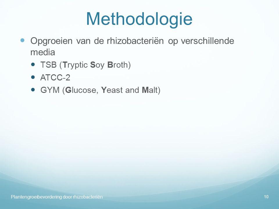 Methodologie Opgroeien van de rhizobacteriën op verschillende media TSB (Tryptic Soy Broth) ATCC-2 GYM (Glucose, Yeast and Malt) Plantengroeibevordering door rhizobacteriën 10