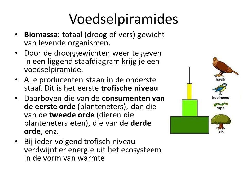 Voedselpiramides Biomassa: totaal (droog of vers) gewicht van levende organismen. Door de drooggewichten weer te geven in een liggend staafdiagram kri