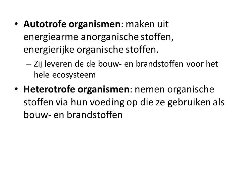Autotrofe organismen: maken uit energiearme anorganische stoffen, energierijke organische stoffen. – Zij leveren de de bouw- en brandstoffen voor het