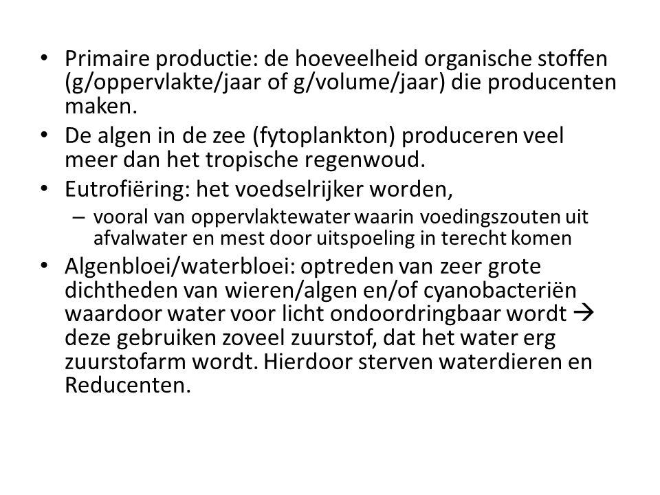 Primaire productie: de hoeveelheid organische stoffen (g/oppervlakte/jaar of g/volume/jaar) die producenten maken. De algen in de zee (fytoplankton) p