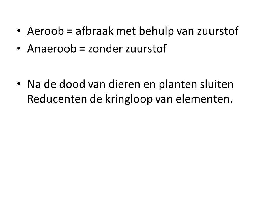 Aeroob = afbraak met behulp van zuurstof Anaeroob = zonder zuurstof Na de dood van dieren en planten sluiten Reducenten de kringloop van elementen.