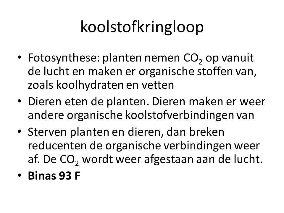 koolstofkringloop Fotosynthese: planten nemen CO 2 op vanuit de lucht en maken er organische stoffen van, zoals koolhydraten en vetten Dieren eten de