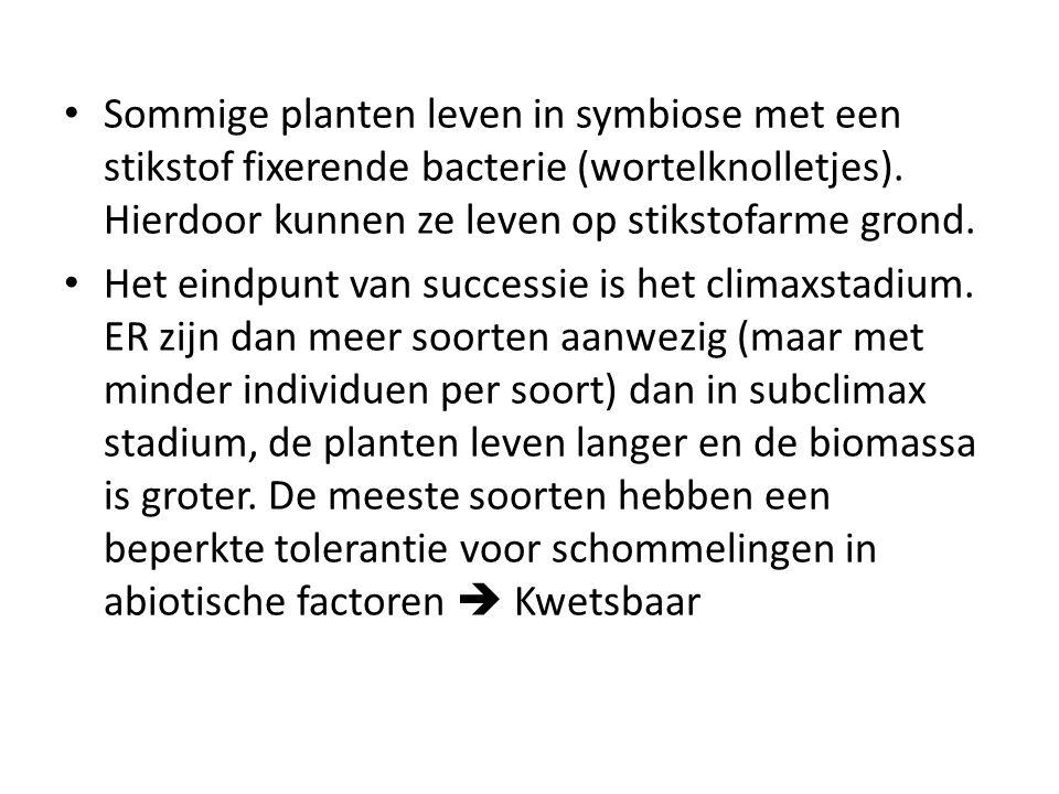 Sommige planten leven in symbiose met een stikstof fixerende bacterie (wortelknolletjes). Hierdoor kunnen ze leven op stikstofarme grond. Het eindpunt